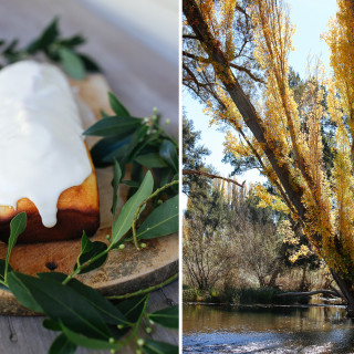 The Ordinary things, baking and Autumn light
